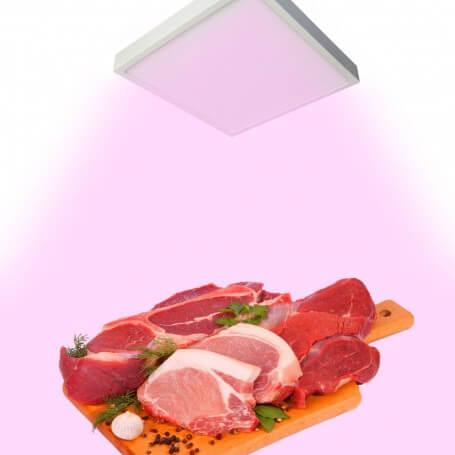 PlafonieraLED Rosa per Banco Carni 18W - Quadrata