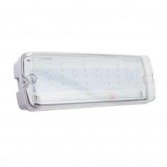 Lampada Emergenza LEDda Soffitto o Parete IP65